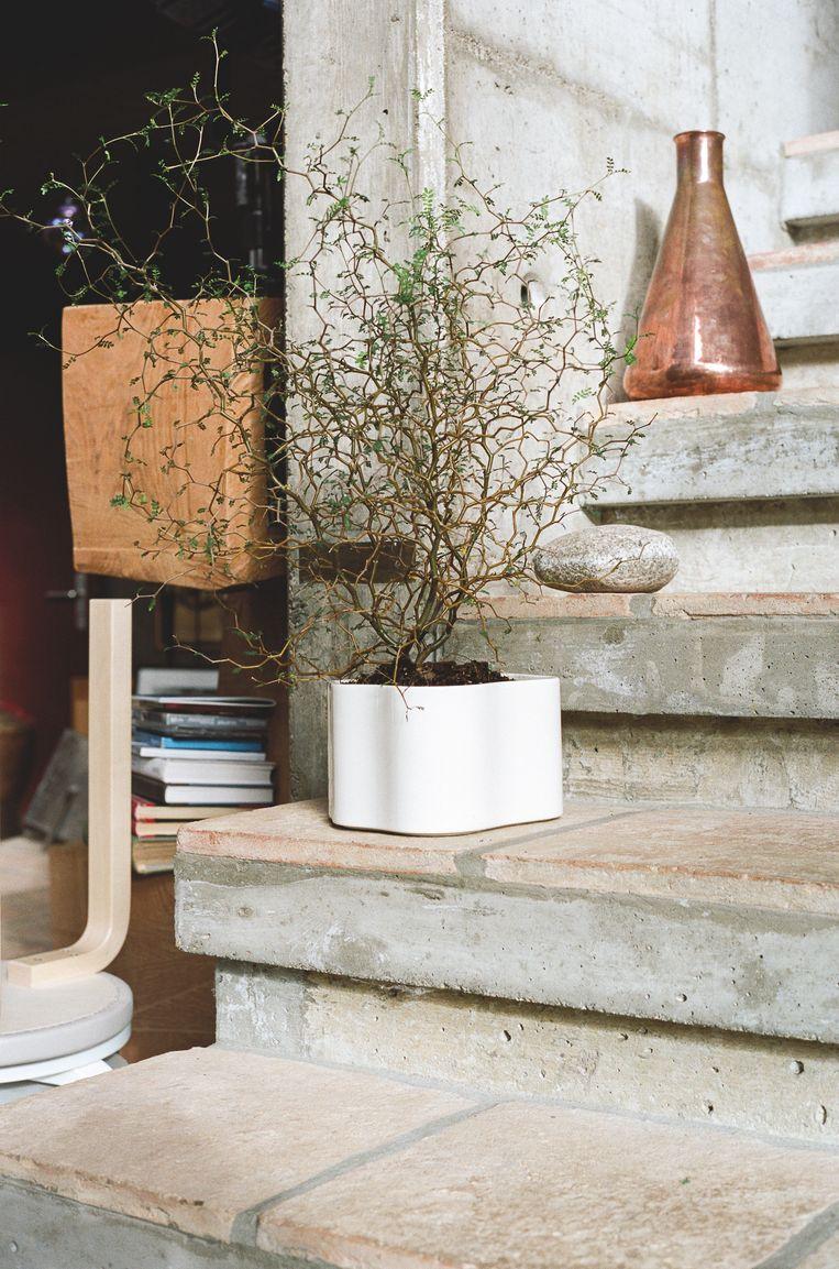 Aino Aalto ontwierp in 1937 een bloempot: Riihitie. De pot werd getoond op de wereldexpo in 1937 in Parijs, maar ging nooit in productie. Artek brengt hem nu in drie formaten en twee kleuren uit: wit en blauw of course.  Beeld rv
