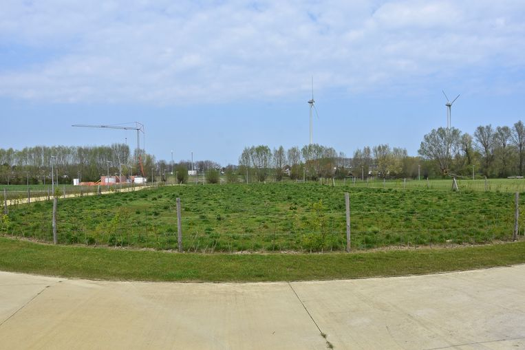 Tuinieren op Langwater - het perceel van 2700 vierkante meter.