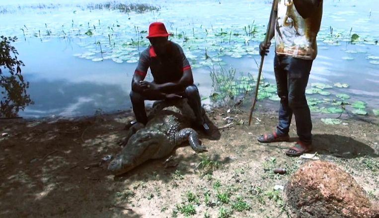 Krokodil en inwoners van Bazoulé
