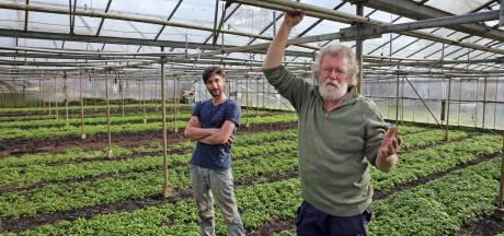 Zonnehorst in Punthorst juicht meer streekproducten op het menu toe: 'Maar eerst zien en dan geloven'