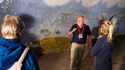 Veel interesse voor de gigantische muurschildering in Fort 2: maar wie schilderde die?