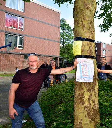 Kruistocht tegen bomenkap in Goudse wijk: 'Bedankt en het spijt me, boom'