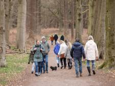 Gemeente Baarn doet dringende oproep: 'Blijf weg uit Lage Vuursche. Het is te druk'