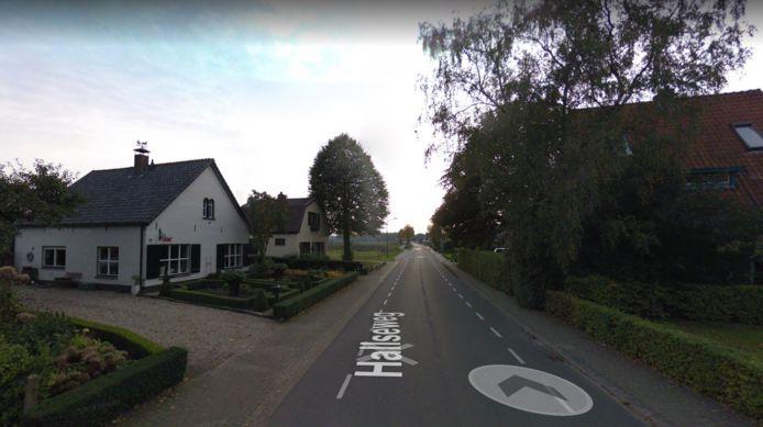 Aan de Hallseweg wordt vanaf 3 tot en met 13 september onderhoud aan het asfalt uitgevoerd.