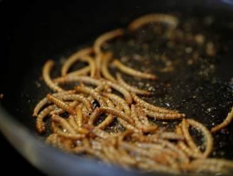 Onderzoek bewijst: Meelwormen zijn goede vervanger voor melkproducten