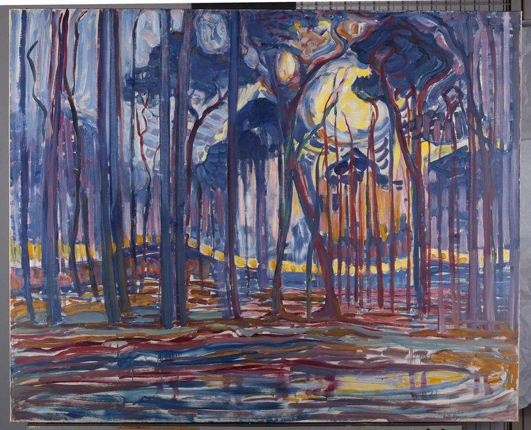 Piet Mondriaan, 'Bos bij Oele', 1908. In Mondriaans landschappen schreeuwen de kleuren. Beeld Hugo Maertens