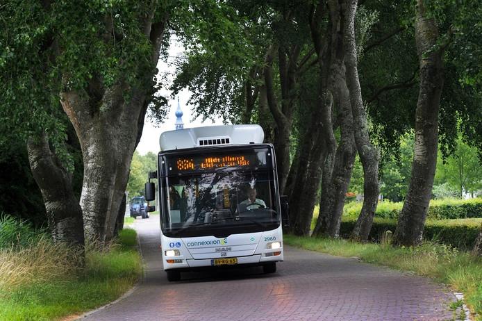 Bomen vormen een probleem voor bussen en vrachtwagens.