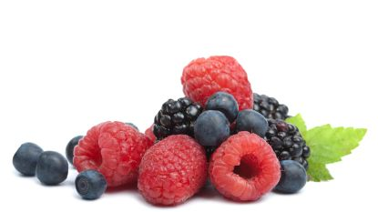 Biomoestuiniers informeren over teelt van klein fruit