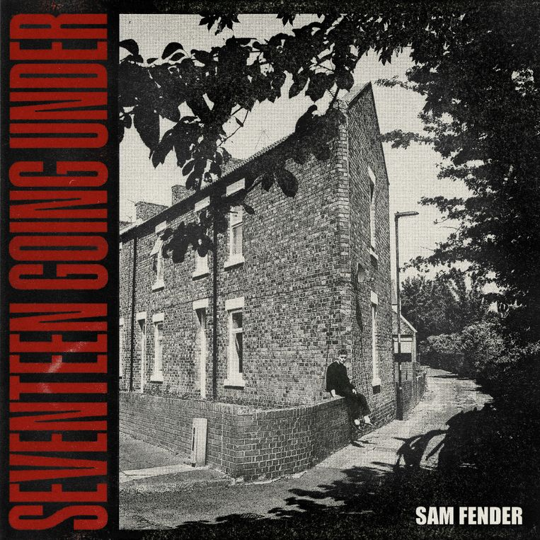 SAM FENDER Seventeen Going Under Beeld rv