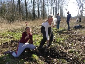 Leerlingen planten bomen in Zeverenbeekvallei