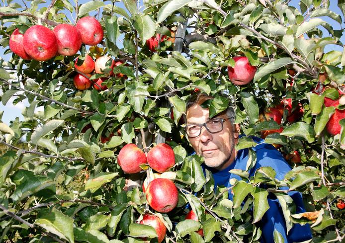 Fruitteler Herman Vereecken kan zijn appels en peren niet kwijt, er hangt nog zo'n 50 ton aan de bomen.