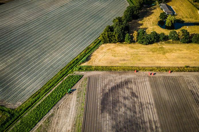 Door de droogte dreigt voor veel boeren een financiële strop vanwege mislukte oogsten.