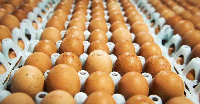 Supermarkten vrezen voor een tekort aan eieren door de maatregelen in Nederland na de ontdekking van vogelgriep. Beeld anp