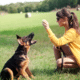 Dít is de (verrassende) populairste hondennaam (die sinds jaren weer terug is)