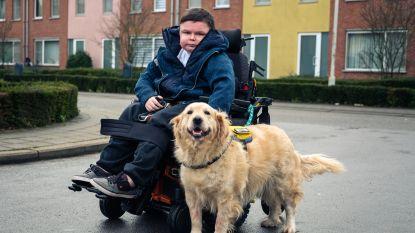 Jesse (18) zamelt geld in voor operatie geleidehond