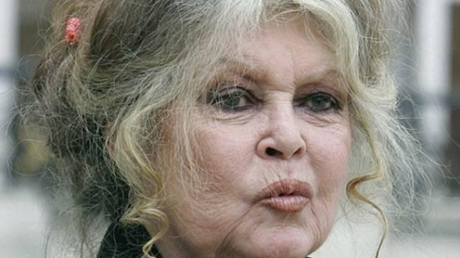 Brigitte Bardot vraagt Europees verbod op dwangvoeding eenden en ganzen