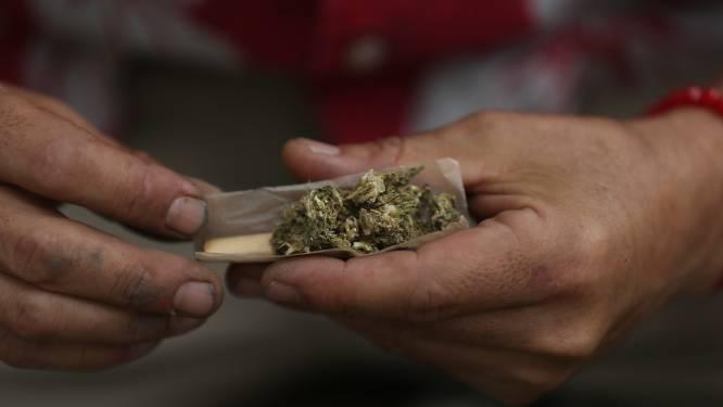 Beetje cannabis kost dertiger drie maanden cel