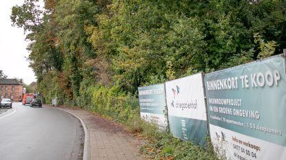 """""""Zoveel bomen kappen? Gaan we niet doen"""": schepencollege weigert vergunningsaanvraag voor woonproject Smisstraat-Driegaaienhoek"""