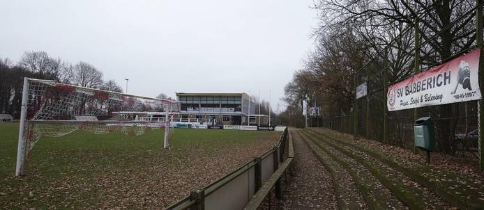 Sportpark De Buitenboom van Babberich. Foto: Theo Kock