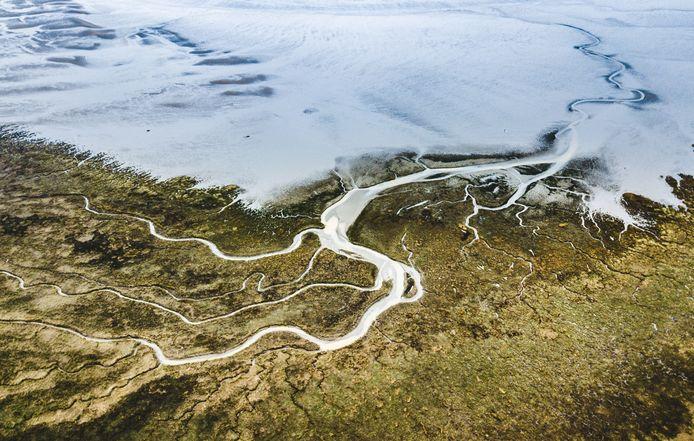 Voorne-Putten is uitgeroepen tot het groenste/duurzaamste gebied van de wereld.