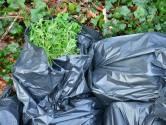 Honderd vuilniszakken vol wietplanten gevonden in de sloot bij Breda