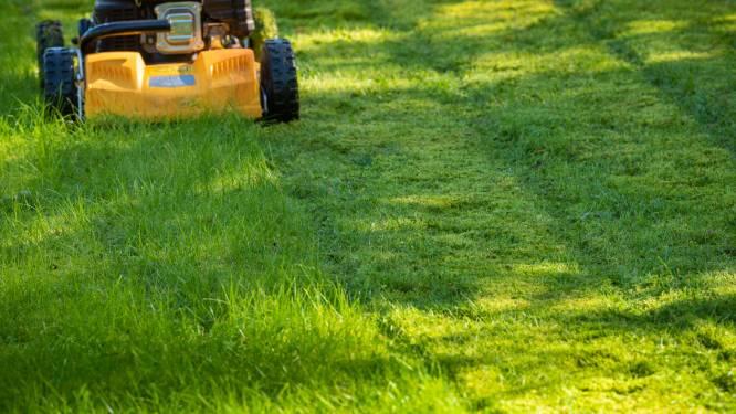 Herne en Halle onderzoeken hoe ze van gemaaid gras een grondstof kunnen maken