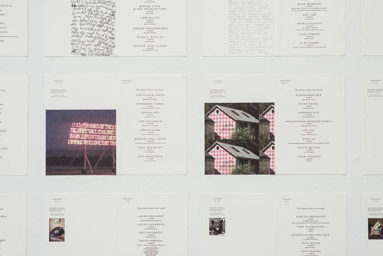 Een paar pagina's uit Gagarin. Beeld Tine Schoemaker