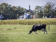 'Een domme boer bestaat niet meer': de ontwikkeling van het platteland in en om Tubbergen en Twenterand