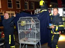 Brandweer redt twee personen en vogel in Newtonstraat