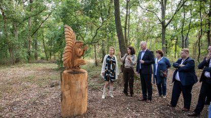 Primeur in België: laatste rustplek in een bos