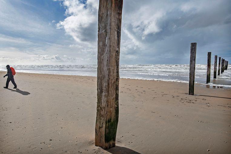 Een wandelaar loopt richting Noordwijk vanuit het strandreservaat Noordvoort. Beeld Guus Dubbelman / de Volkskrant