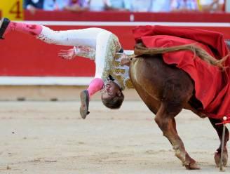 Stieren uitdagen loopt vaak mis: 9 video's tonen waanzin van stierenleed als entertainment