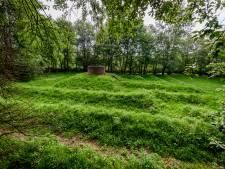 Schaduwlijn in labyrint geeft moment van zomerzonnewende aan