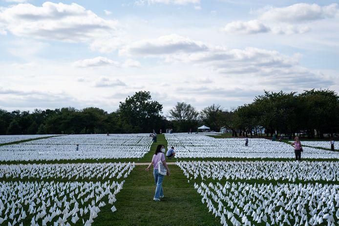 De 'In America: Remember' een publieke kunstinstallatie van Suzanne Brennan Firstenberg in Washington, DC. Voor elke aan Covid-19 overleden Amerikaan is een plastic vlaggetje in het gras geplant.