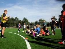 Kunstgrasveld in Heelsum is grote stap in samenwerking voetbalclubs
