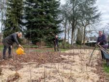 Hier is een Tiny Forest geplant: 'We verarmen de bodem niet, maar verbeteren die juist'