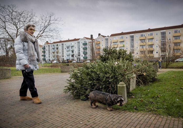 Een kerstbomen liggen langs de kant van de weg na de feestdagen.