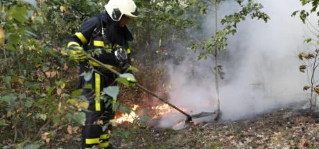 Natuurbrand in bossen bij Molenschot
