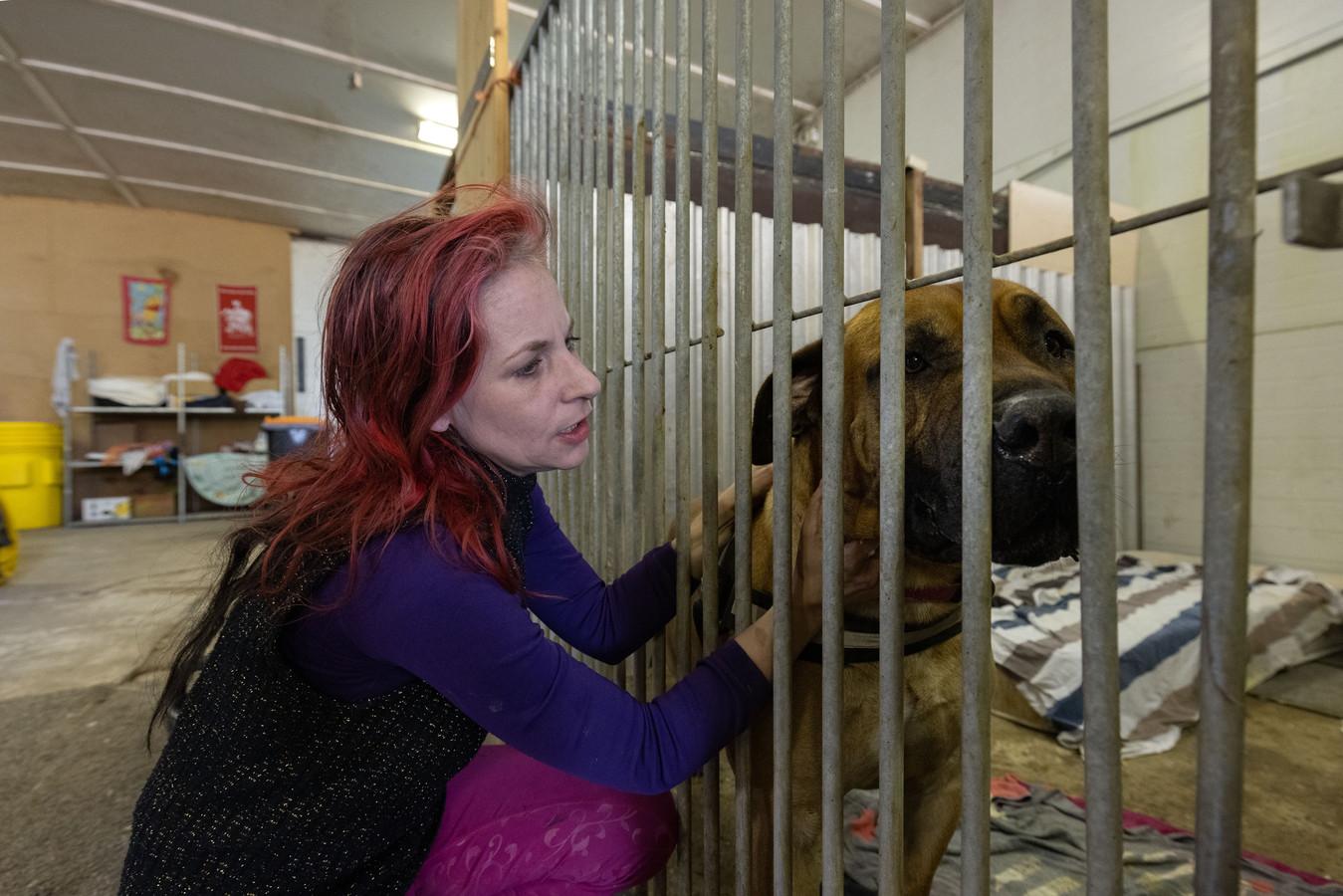 Chelsey van Minderhout bij dierenopvang Stella.