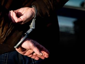 Vrachtwagenchauffeur gearresteerd tijdens verkeersactie in Genk