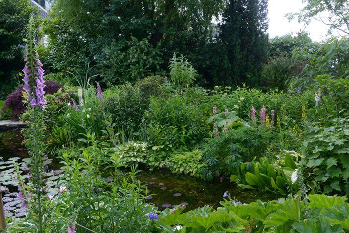 De beplanting is een mix van natuurlijk groen in combinatie met sierplanten.