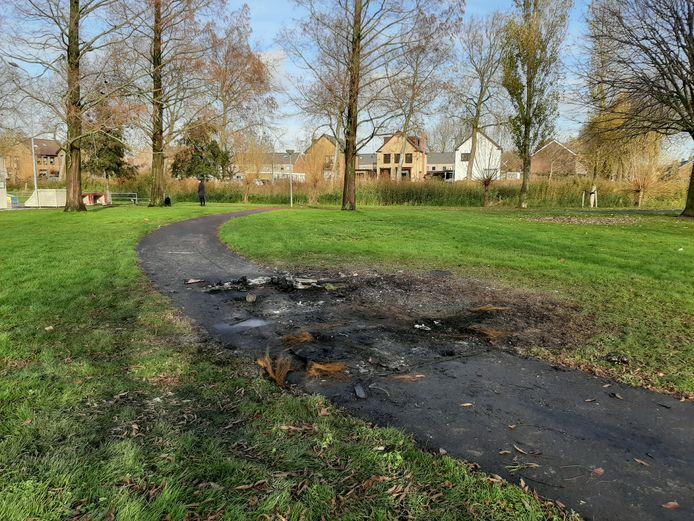 In het naastgelegen Wilhelminapark ging een auto in vlammen op.