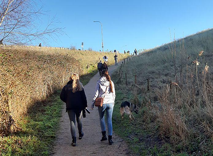 De weg van het Nollebos naar de boulevards is nu redelijk steil en niet toegankelijk voor slecht ter been zijnden en veel rolstoelers, betoogt actiegroep Ons Nollebos.