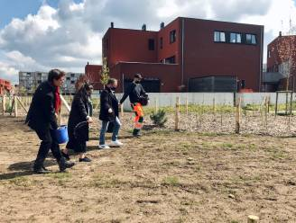 """Leuven geeft startschot voor nieuwe 'ByeByeGrass'-campagne: """"Grootste bloemenweide van de stad aan Hal 5"""""""