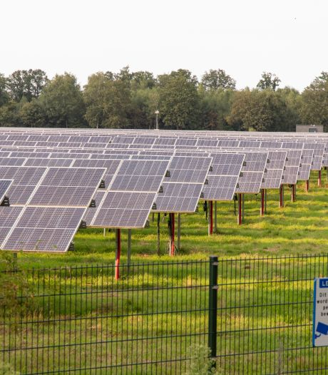 Berg en Dal gaat ondanks problemen met stroomnet 'gewoon door' met zonneparken