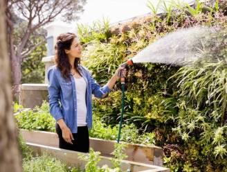 Water besparen in tijden van droogte? Deze tips helpen je op weg