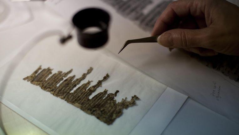 Een onderzoeker bekijkt een fragment van de Dode Zeerollen Beeld epa