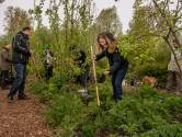 De buurttuin zorgt niet alleen voor groenten en fruit, maar ook voor verbinding: 'Je bouwt een sterke band op'