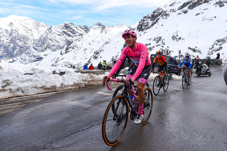 Patrick Lefevere: 'We gaan naar de Giro met Almeida (foto) als kopman. Remco is de underdog. De eerste week zal cruciaal zijn, om het goeie gevoel terug te vinden.' Beeld Photo News