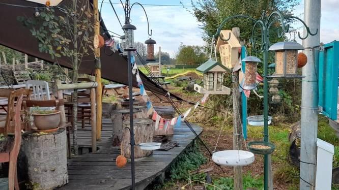 """Bezoekerscentrum De Groene Vallei krijgt vogelbistro: """"Met lekkers zijn vogels bestand tegen weersinvloeden"""""""